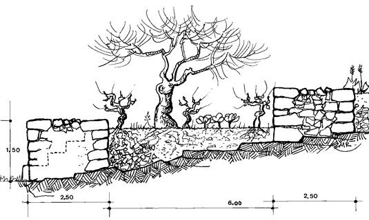 un petit propri taire b tisseur de terrasses de culture michel rouvi re. Black Bedroom Furniture Sets. Home Design Ideas