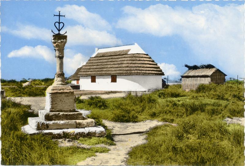 Les cabanes du front de mer aux saintes maries de la mer for Maison de camargue