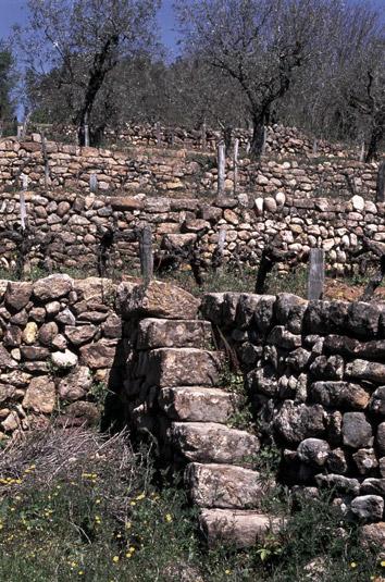 Escalier en pierres s ches les camina res si ges de l for Construire un escalier en pierre seche
