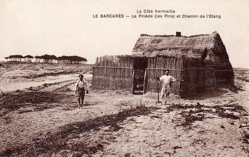 Les Cabanes De Roseaux Du Littoral Du Golfe Du Lion  U00e0