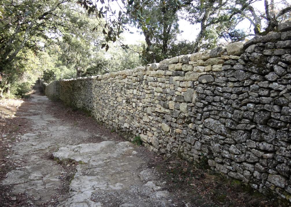 interventions sur le mur en pierre s che du clos de l 39 abbaye de ganagobie alpes de haute. Black Bedroom Furniture Sets. Home Design Ideas